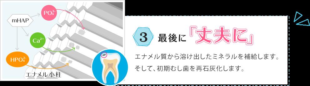 3.最後に「丈夫に」エナメル質から溶け出したミネラルを補給します。そして、初期むし歯を再石灰化します。