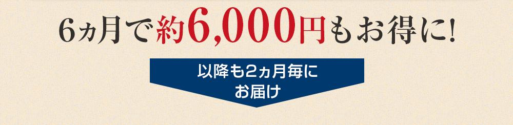 定期購入コースは2ヵ月毎に2本お届けします。